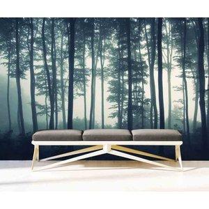 Zelfklevend Fotobehang Bos in de Mist