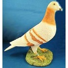 Leonardo Collection Pigeon