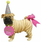 Westland (Happy Birthday) Sharpei (Happy Birthday)