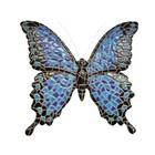 Barcino Design Vlinders