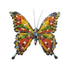 Barcino Design Butterfly