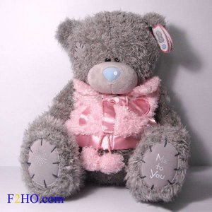 Me To You Teddy Tatty (Rose Gillet)
