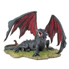 Studio Collection Black Dragon (Lying)