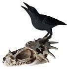 Studio Collection Skull Of Corvax