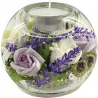 Gilde Dreamlight Provence