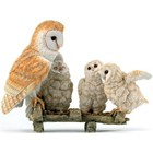 Country Artists Barn Owl