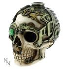Anne Stokes Steampunk Skull