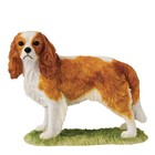 Border Fine Arts Cavalier King Charles (Blenheim)