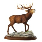 Border Fine Arts Large Stag