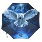 Anne Stokes Awake your magic Paraplu
