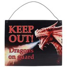 Anne Stokes Keep Out Dragon's Metal Sign