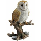 Studio Collection Barn Owl  on branch