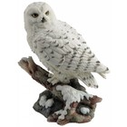Studio Collection Snow owl  on branch