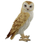 Studio Collection Barn Owl