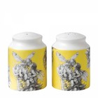 Flower Fairies Salt & Pepper (Set 2-Gorse Fairy)