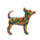 Barcino Design Chihuahua (Carnival)