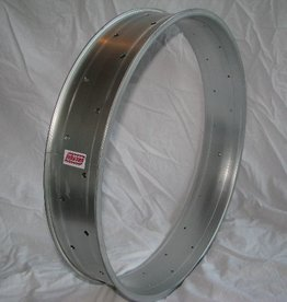 "alloy rim DW100, 24"", silver (matt) anodized"