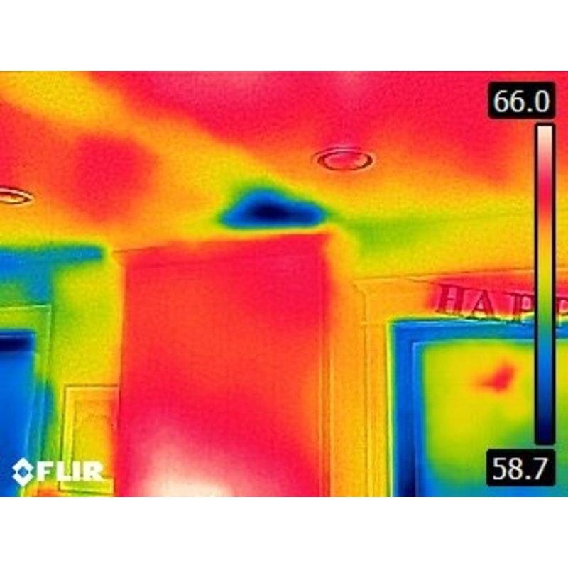 FLIR C2 caméra thermographique
