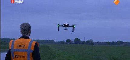 Weidevogelnesten opsporen met een natuurdrone