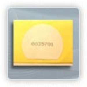 BDG-PLS-MF1K-S MIFARE 1K 30x26mm Adhesive Tag