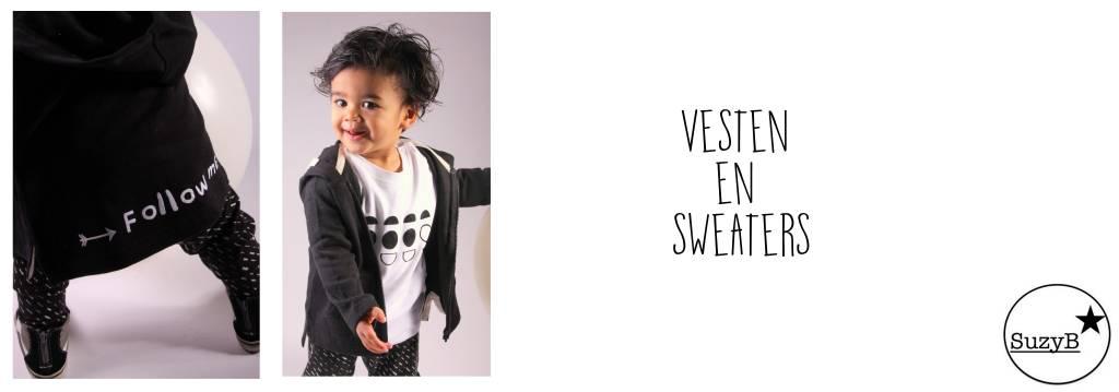 Vesten en sweaters