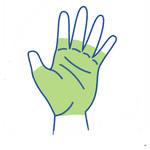 Handbrace of Handspalk kopen? Ruime keuze online handbraces!