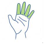 Vingerbrace of Vingerspalk kopen? Bekijk ons online vingerbraces assortiment.