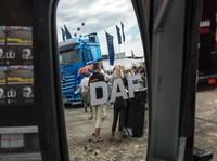 Spiegelglas mit LED-Blinker passend für DAF Trucks