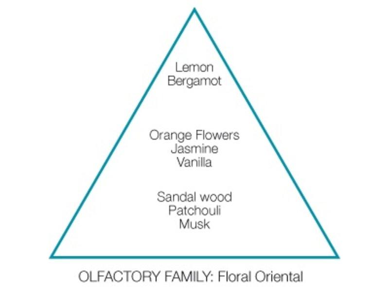 Mr & Mrs Fragrance #11 Samoan Woods