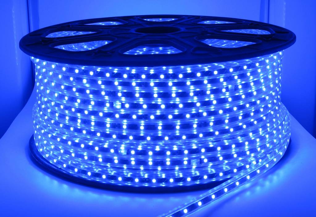 100 Meter High Voltage LED strip Blauw - Groothandel-XL