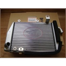 VTR1000 SP Kuehler LINKS Honda OEM Part