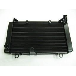 CBF1000 radiador