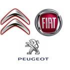 Peugeot,Citroen,Fiat