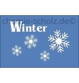 Fatzzo TT Autoscheiben-Reiniger Frostschutz bis -70° 10 Liter