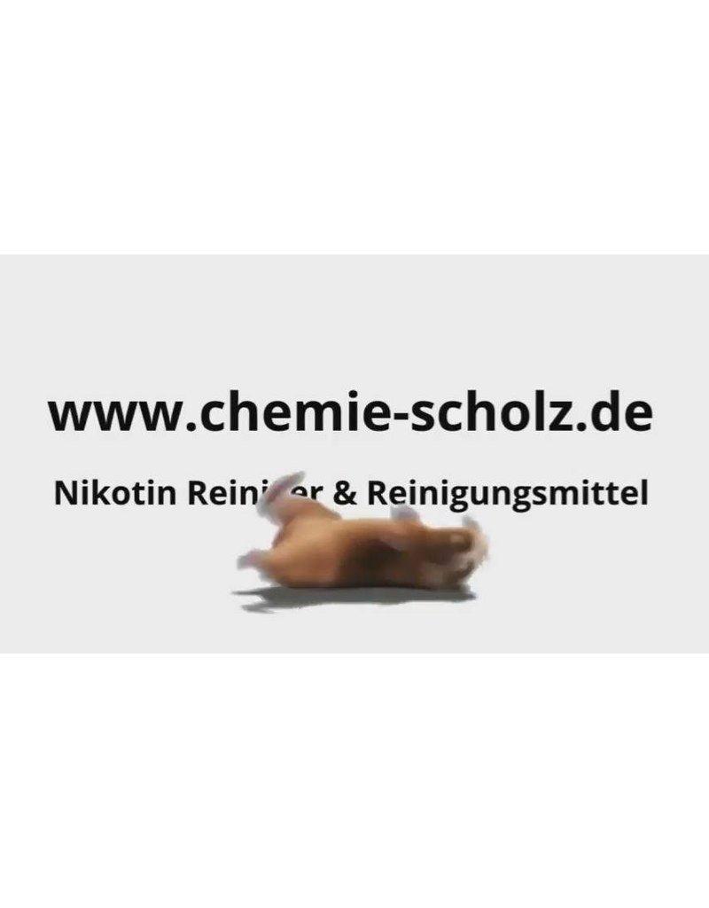 Dr. Schuhmacher GmbH HACCP Decontaman antimikrobielle Waschlotion 5L