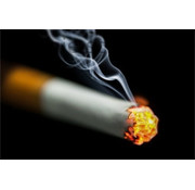 Fatzzo TT Nikotin Reiniger 500ml Sprühflasche