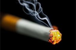 Neu Nikotin Reiniger 500ml Sprühflasche