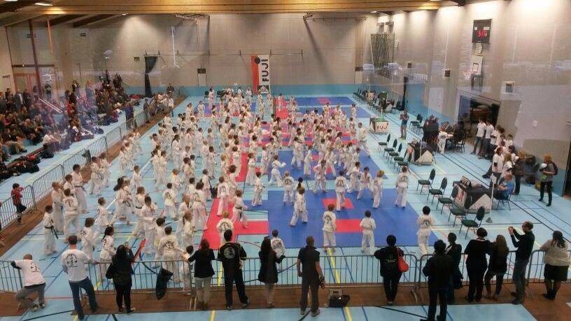 Fuji Mae Cup