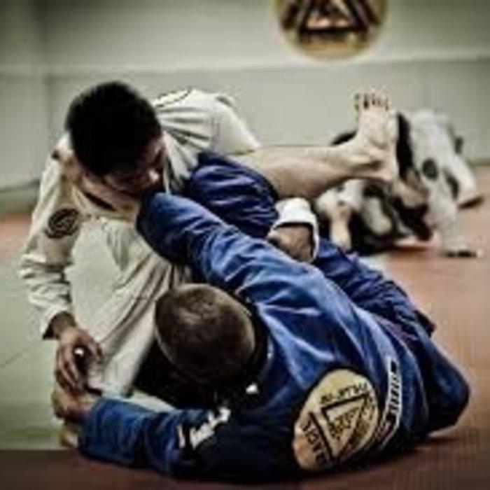 Braziliaans Jiu Jitsu