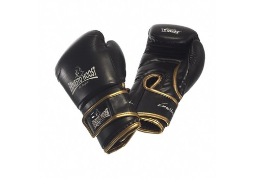 Ernesto Hoost Amateur Boxing Gloves