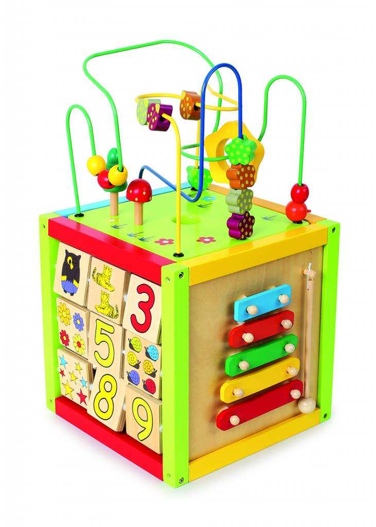 Activity Cube, large