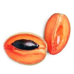Caimito seeds