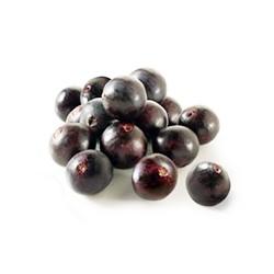 Choloke Seeds