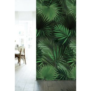 KEK Amsterdam Photo Wallpapers Tropical Palm