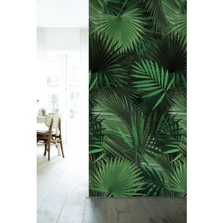 Fototapeten Tropical Palm
