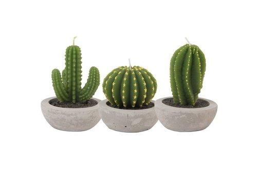 &Klevering Kaarsen Cactus - 3 stuks