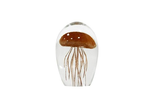 HKliving glass jellyfish M coral