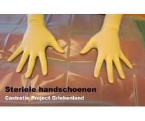 Steriele Handschoenen DONATIE