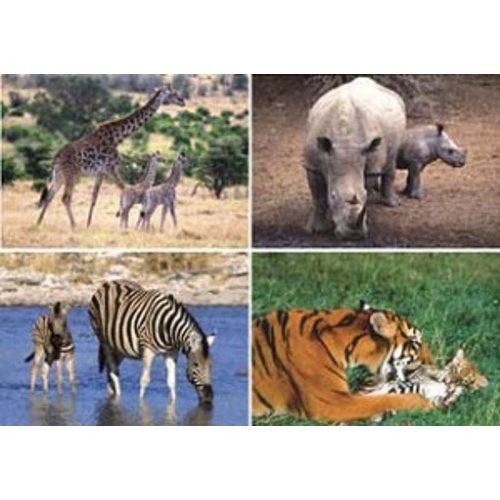 Reuzewenskaarten, 4 soorten 'wild met jong'