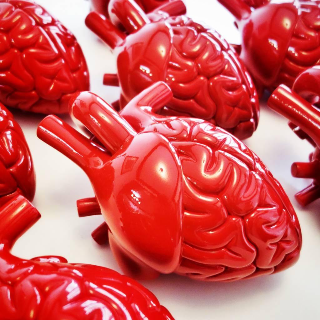 Jouet en forme de coeur et de cerveau au Art Toys d'Amsterdam.